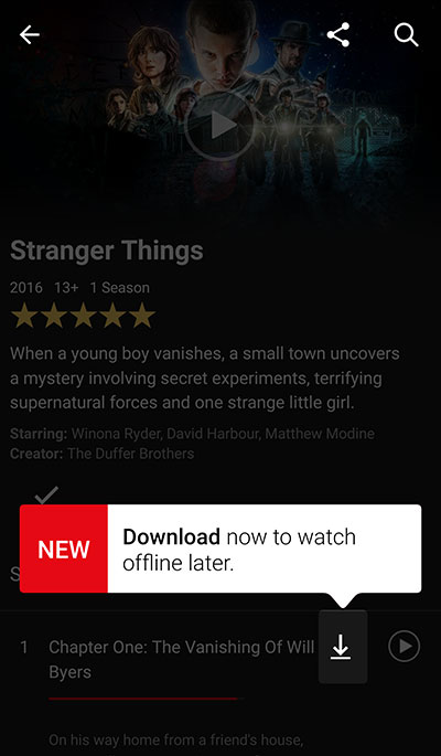netflix-download-option